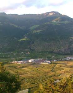 Südtiroler Mivor |Mobotix Referenz
